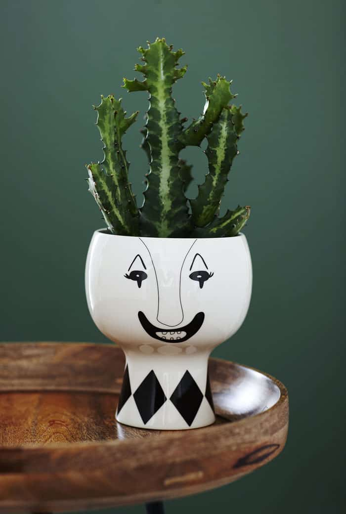 Flower Me Happy Pot by Meyer Lavigne
