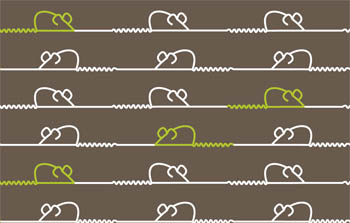 Trouble & Squeak Loopy Blind by Fiona Flame for Creatively Different Blinds