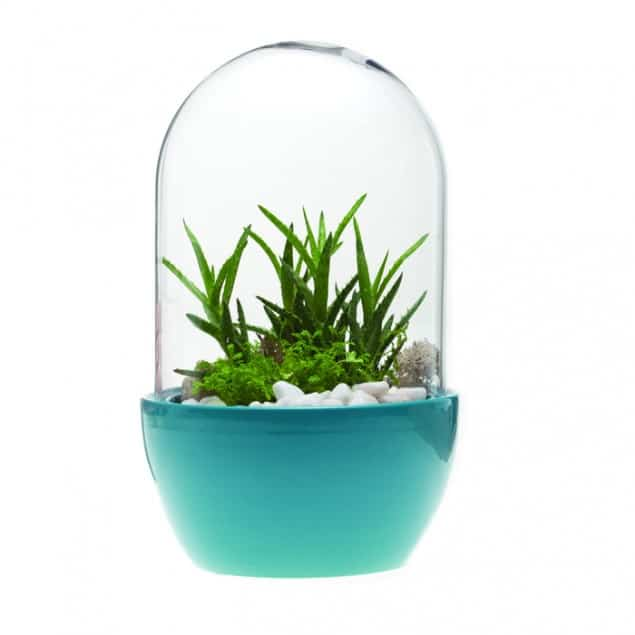 Pill Terrarium teal vase by Chive UK