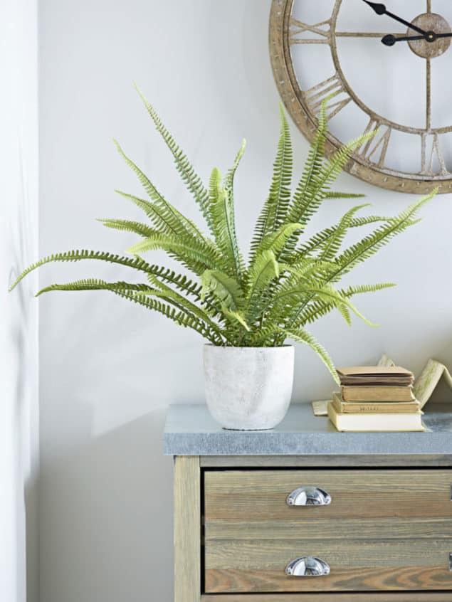 Create a cosy winter home with this faux potted Boston fern from Cox & Cox