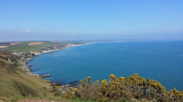 Coastline South Devon