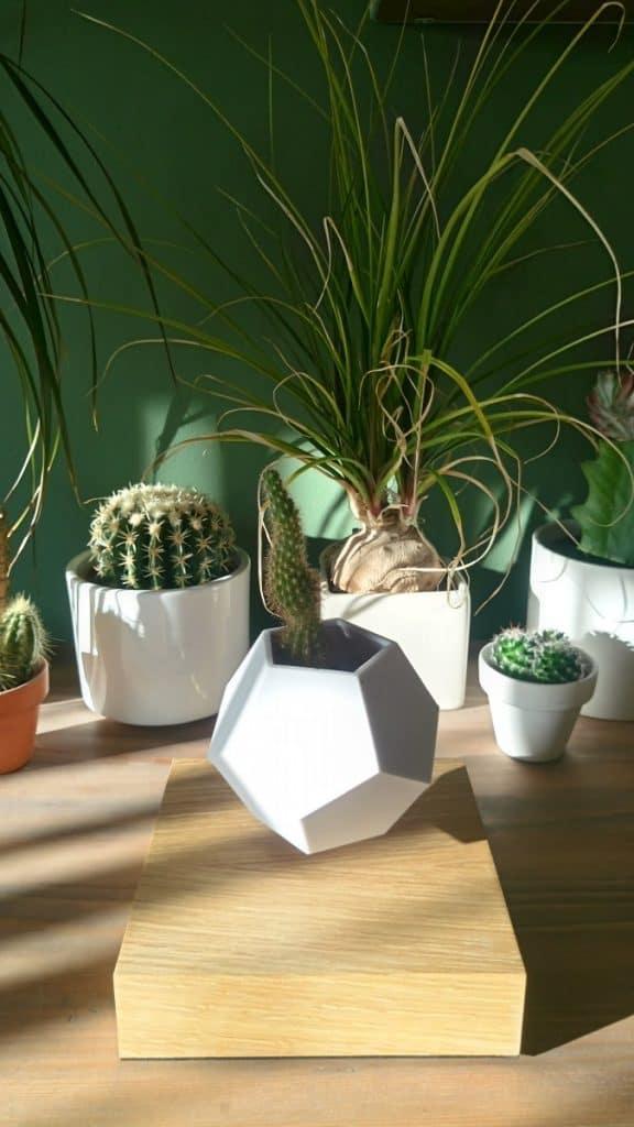Lyfe Levitating plant pot