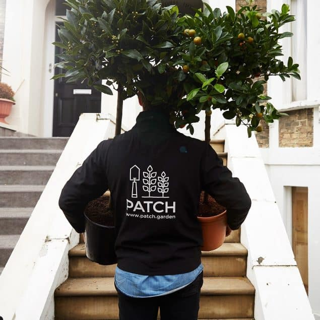 Patch Plants delivers plants on weekday evenings and Saturdays