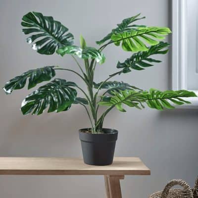 Faux Potted Monstera – Small