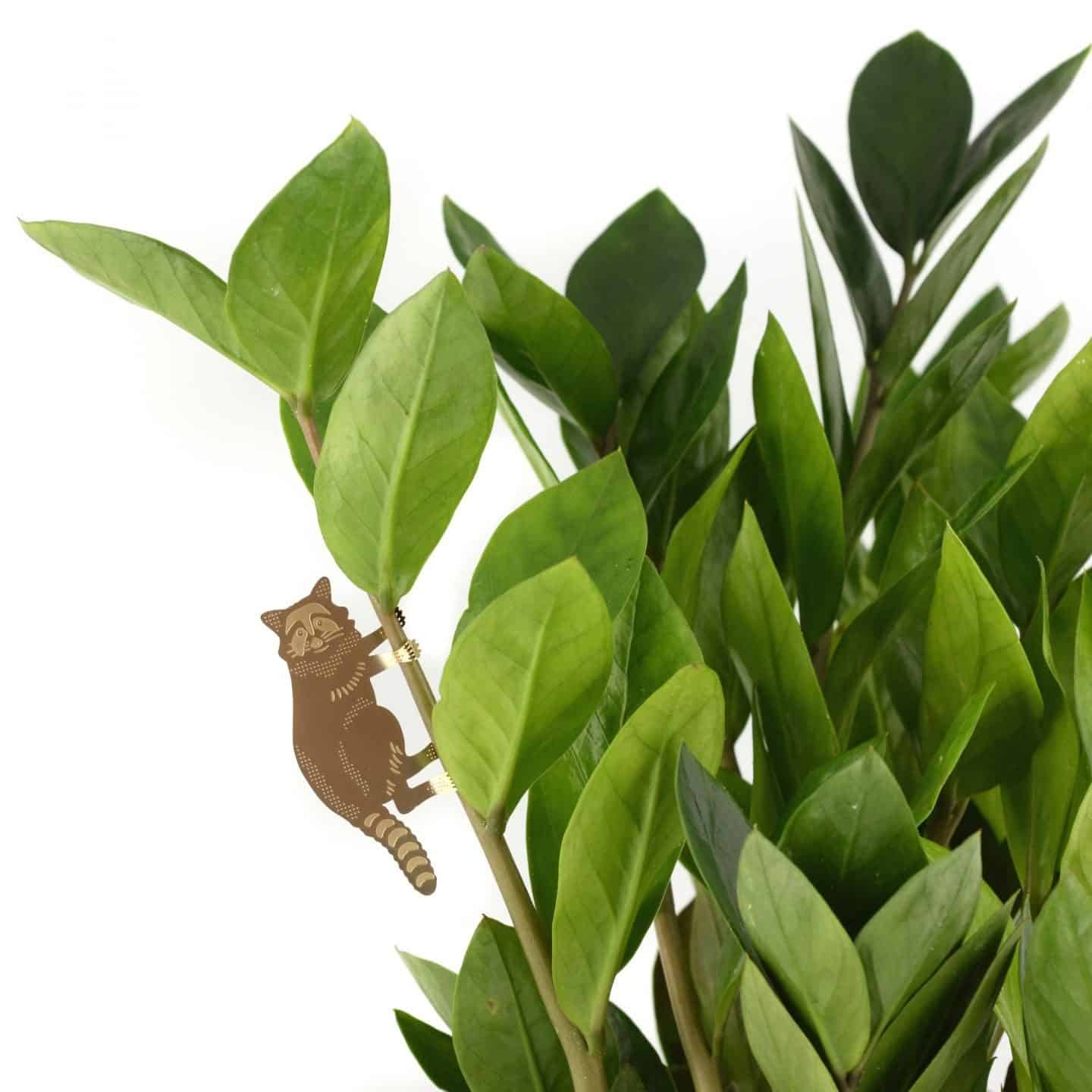 Gifts for plant lovers. These brass animal decorations from Another Studio can be hung on trees and plants