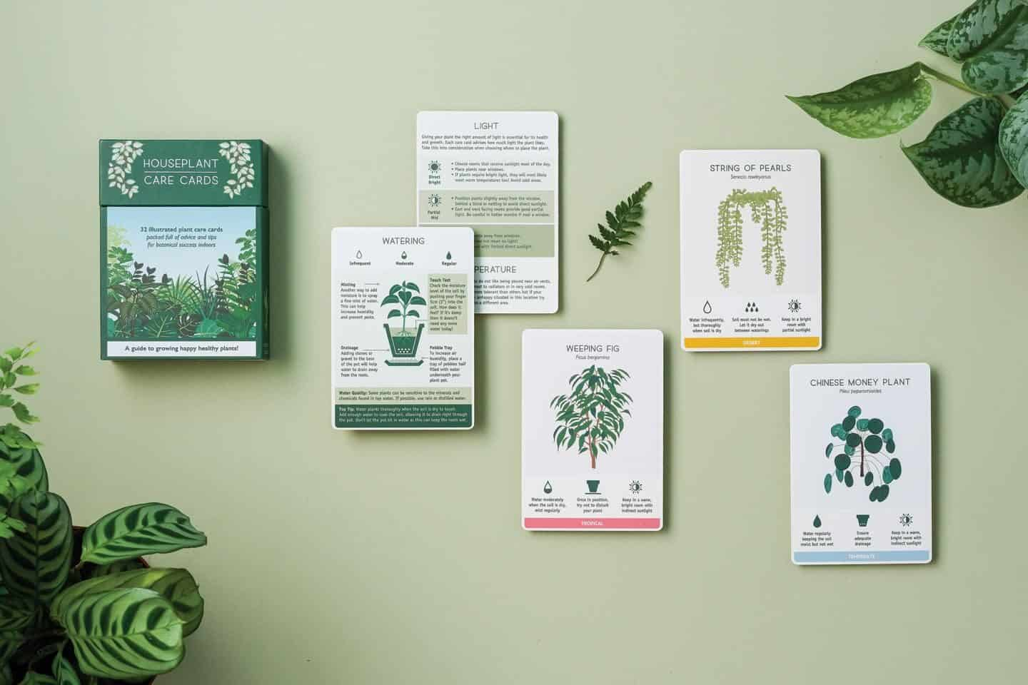 Gifts for plant lovers - these plant care cards from another studio offer tips and advice for caring for your plants