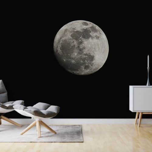 Wall Mural featuring the moon
