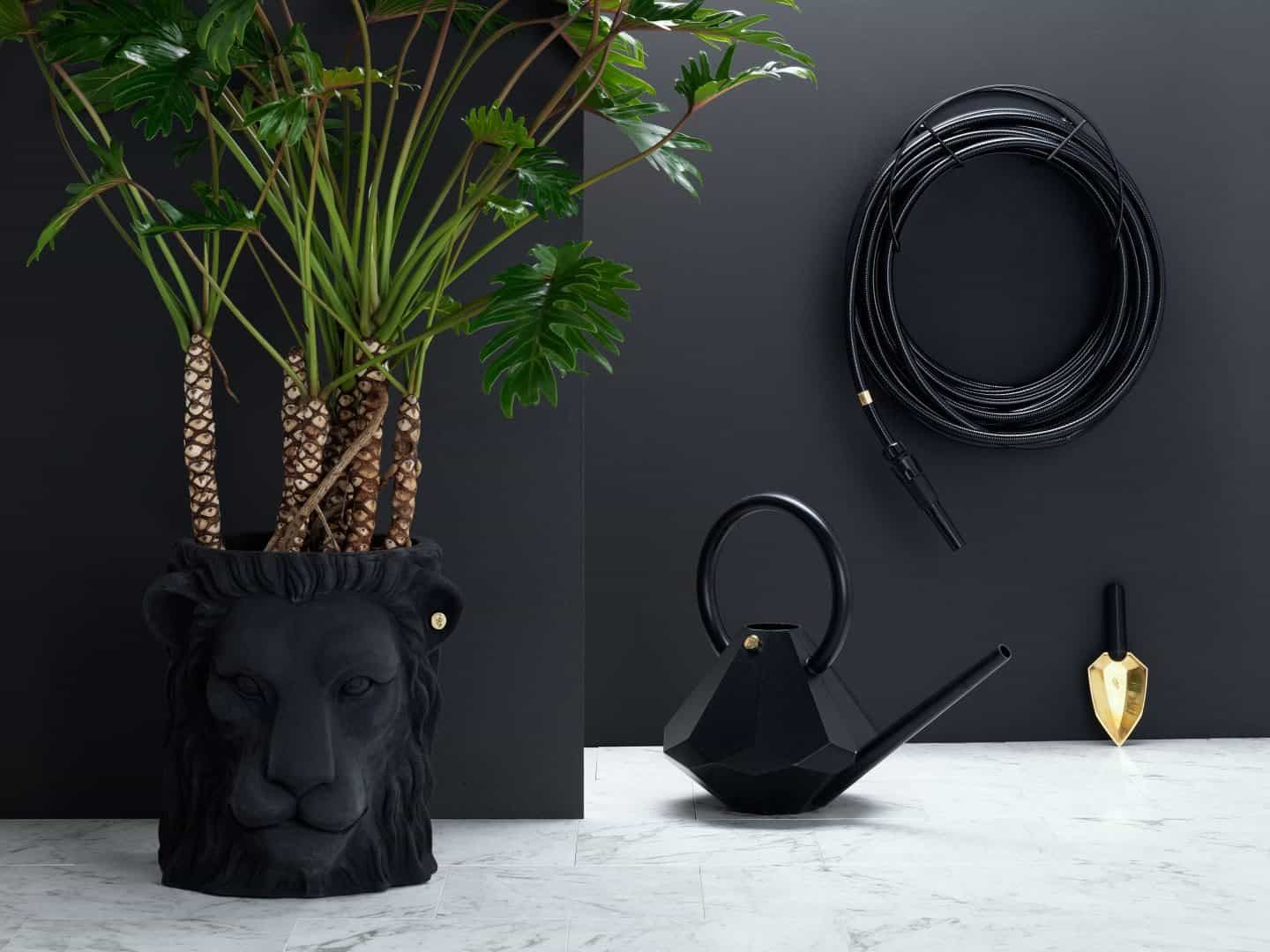 Garden Glory - Stylish garden equipment - black garden hose, watering can and lions head plant pot