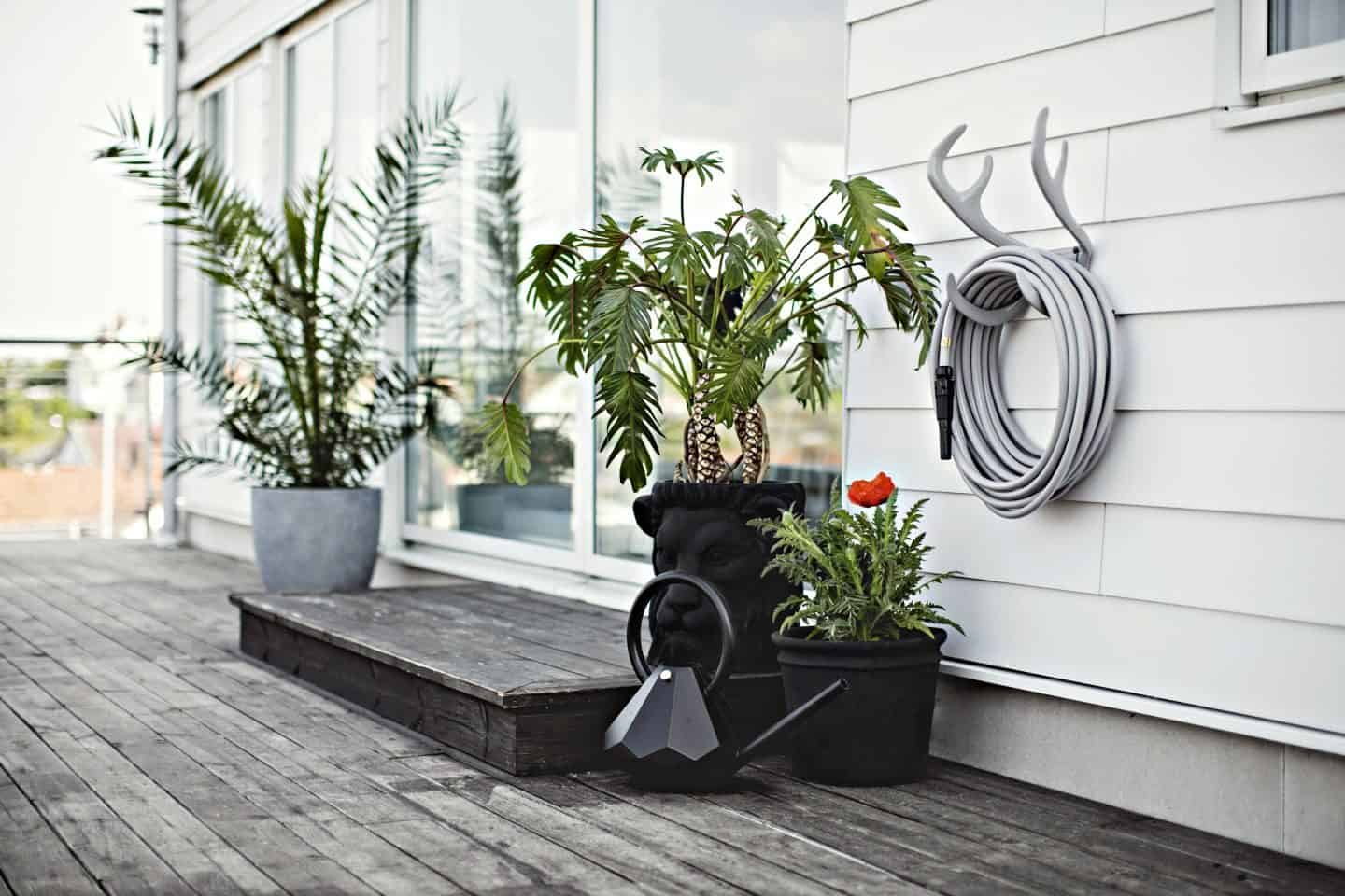 Garden Glory - Stylish garden equipment - grey garden hose wall-mounted on antlers