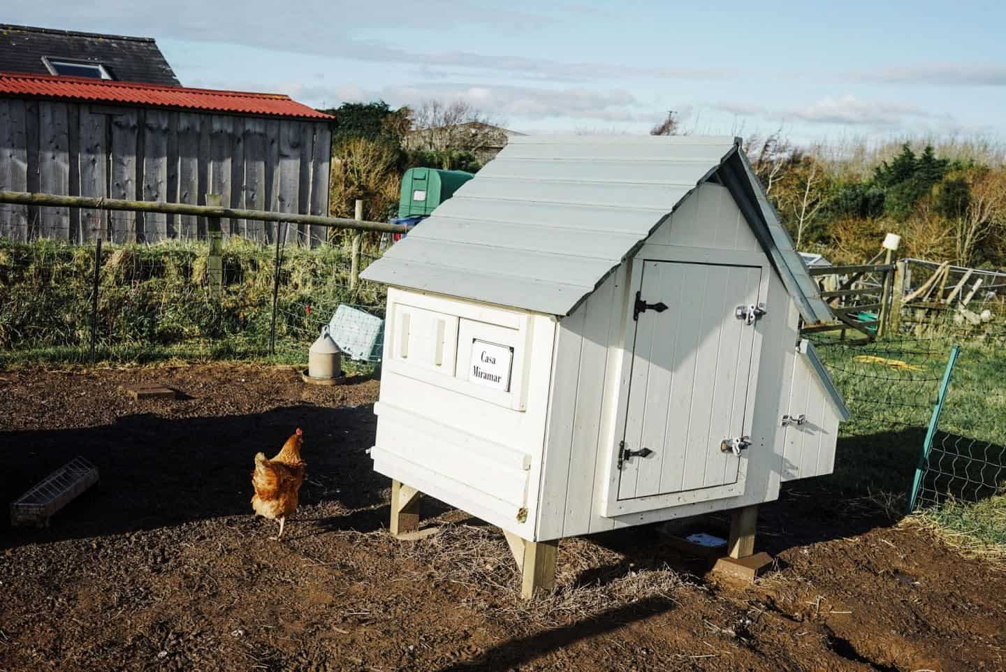 enamel house signs by Ramsign seen on a chicken coup