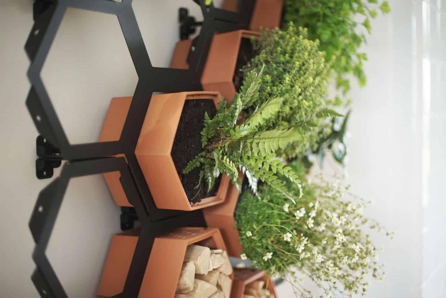 Chalk & Moss Horticus interior vertical garden kit
