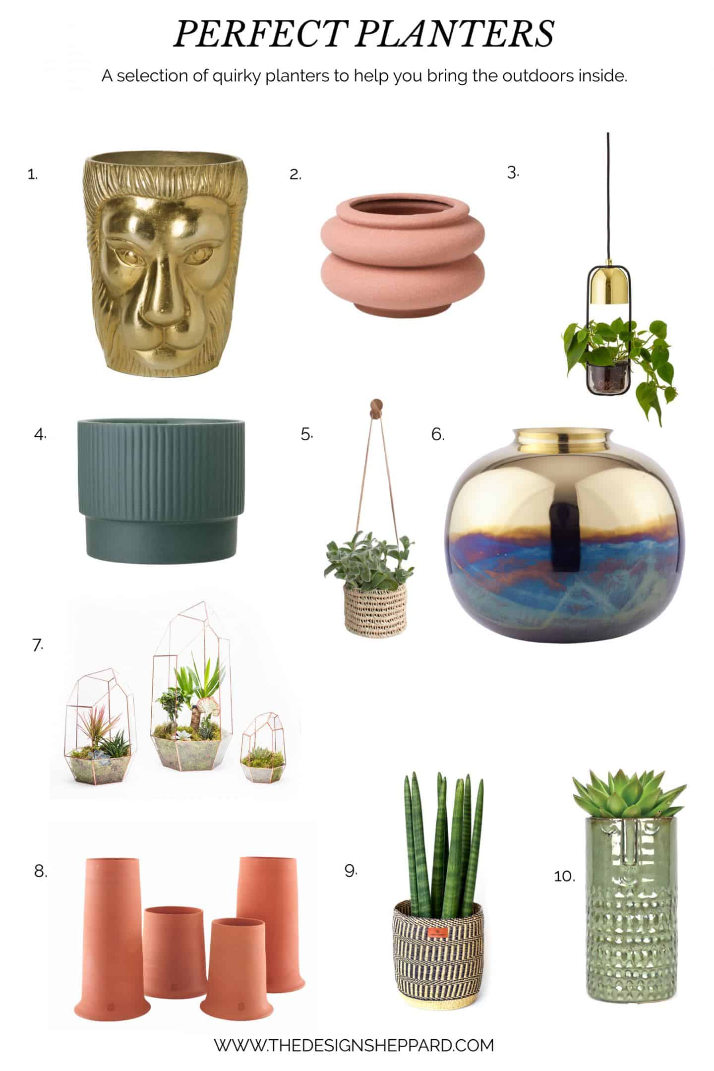 A selection of quirky planters to add personality to your home.