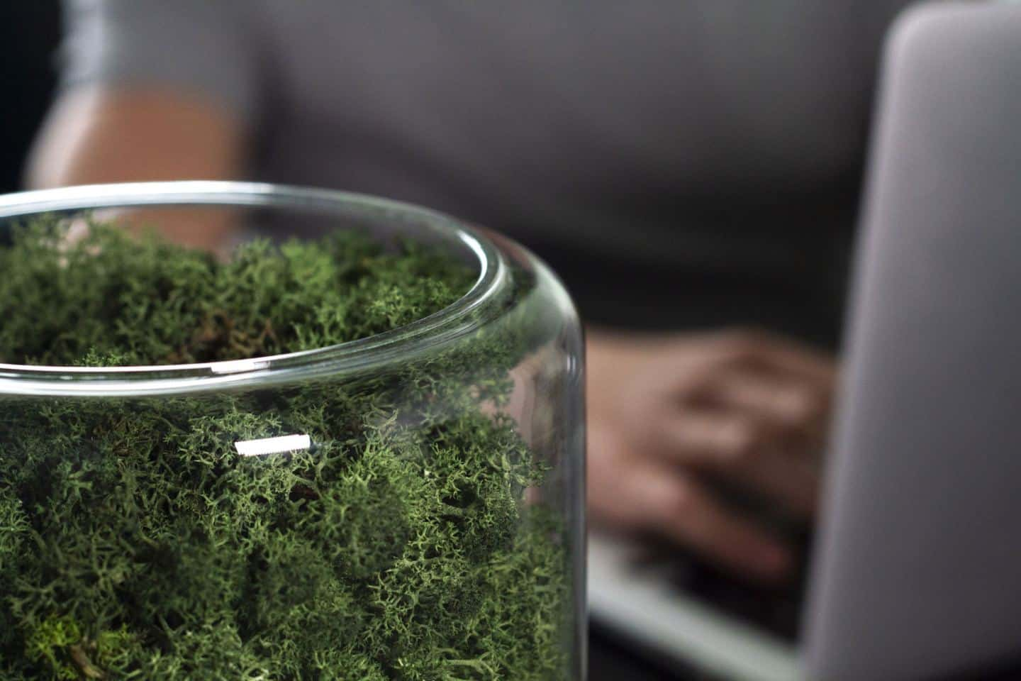 The Briiv sustainable and natural air purifier seen from above with a man working on a laptop in the background