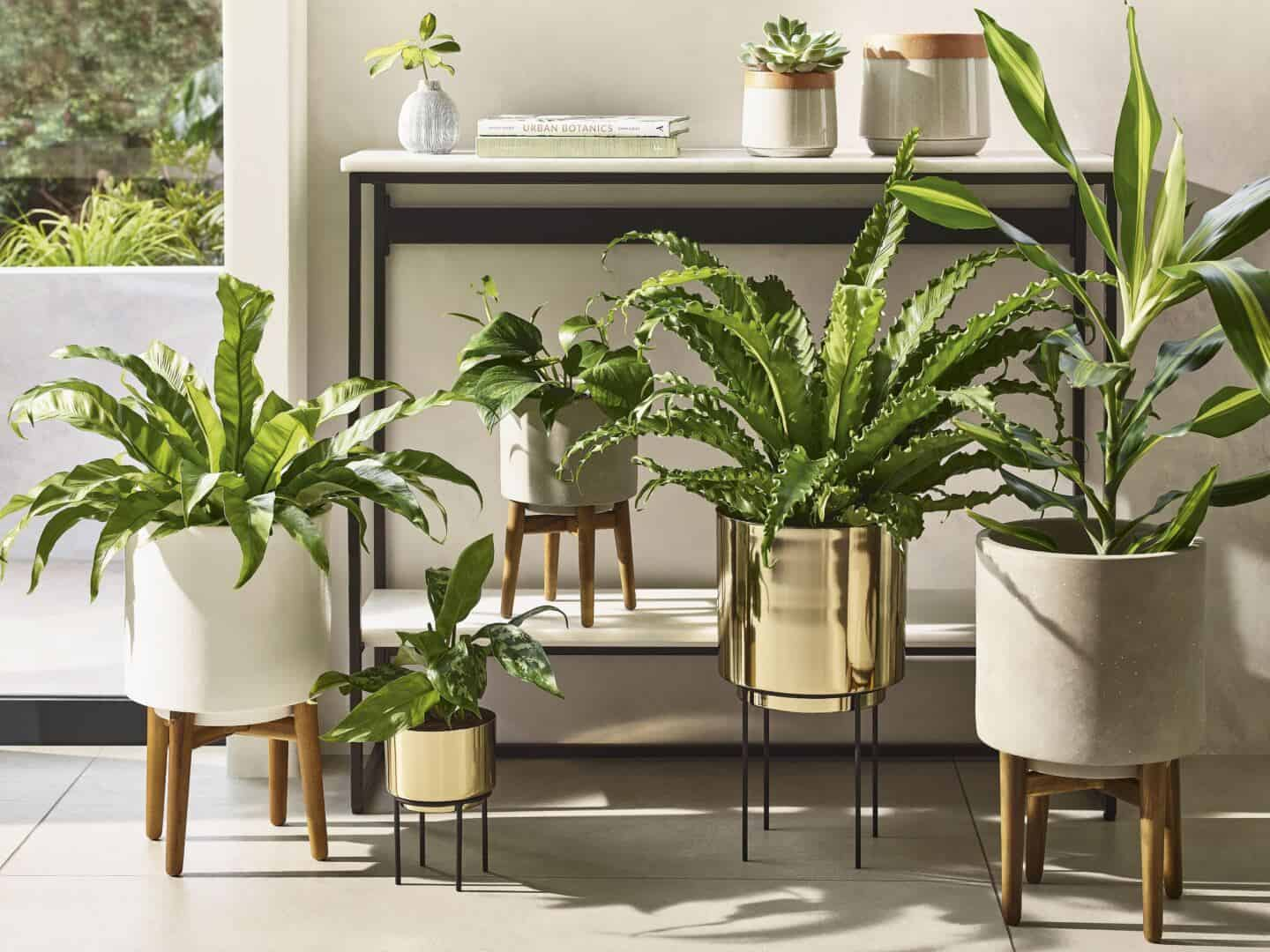 Botanicals are a SS20 interiors trend by M&S. Plants invite nature in interiorsand these plant pots on legs add height to your plant gang.