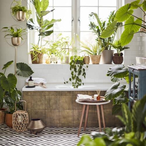 Bathtub in a bathroom which is full of plants.
