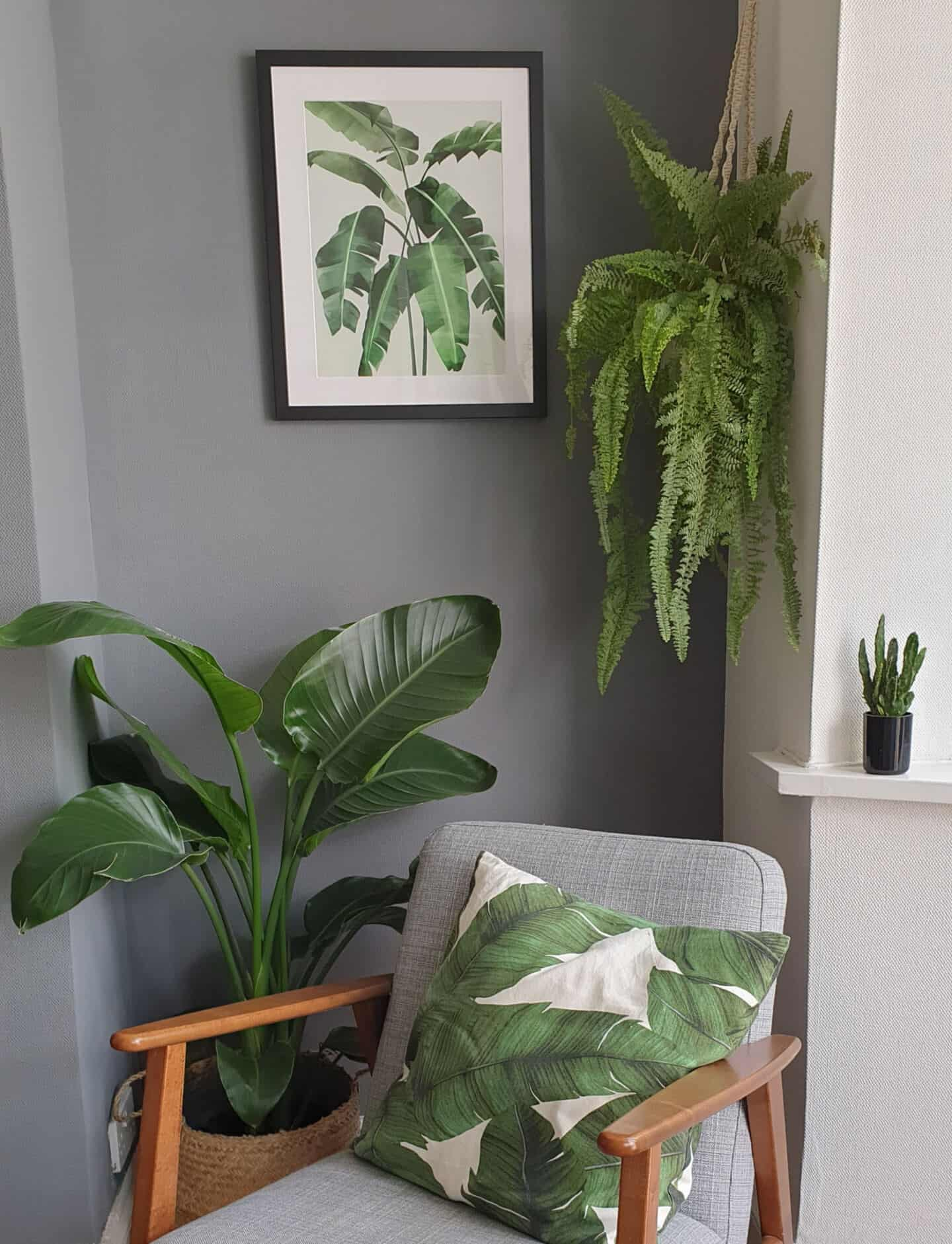 Botanical artwork inspired by Travel from Greenlili hung on a grey living room wall avove an ocassional chair and surrounded by plants