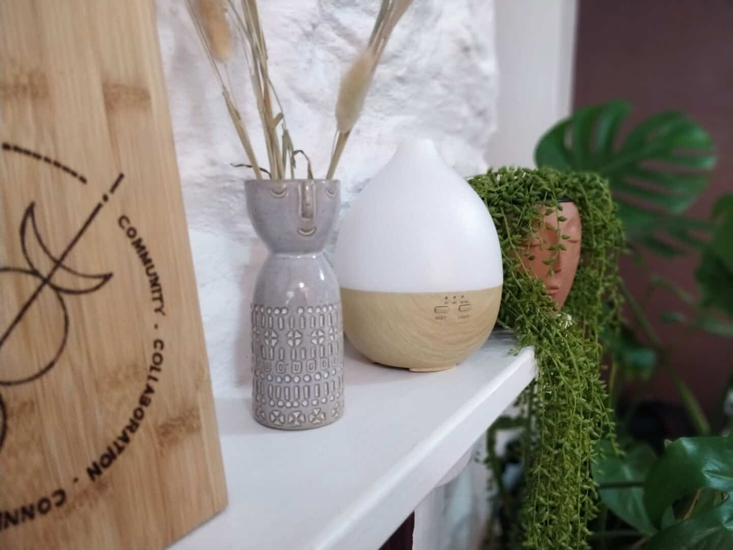 Smellacloud aroma diffuser on a mantle with plants and bunny tails in abstract faces plant pots.
