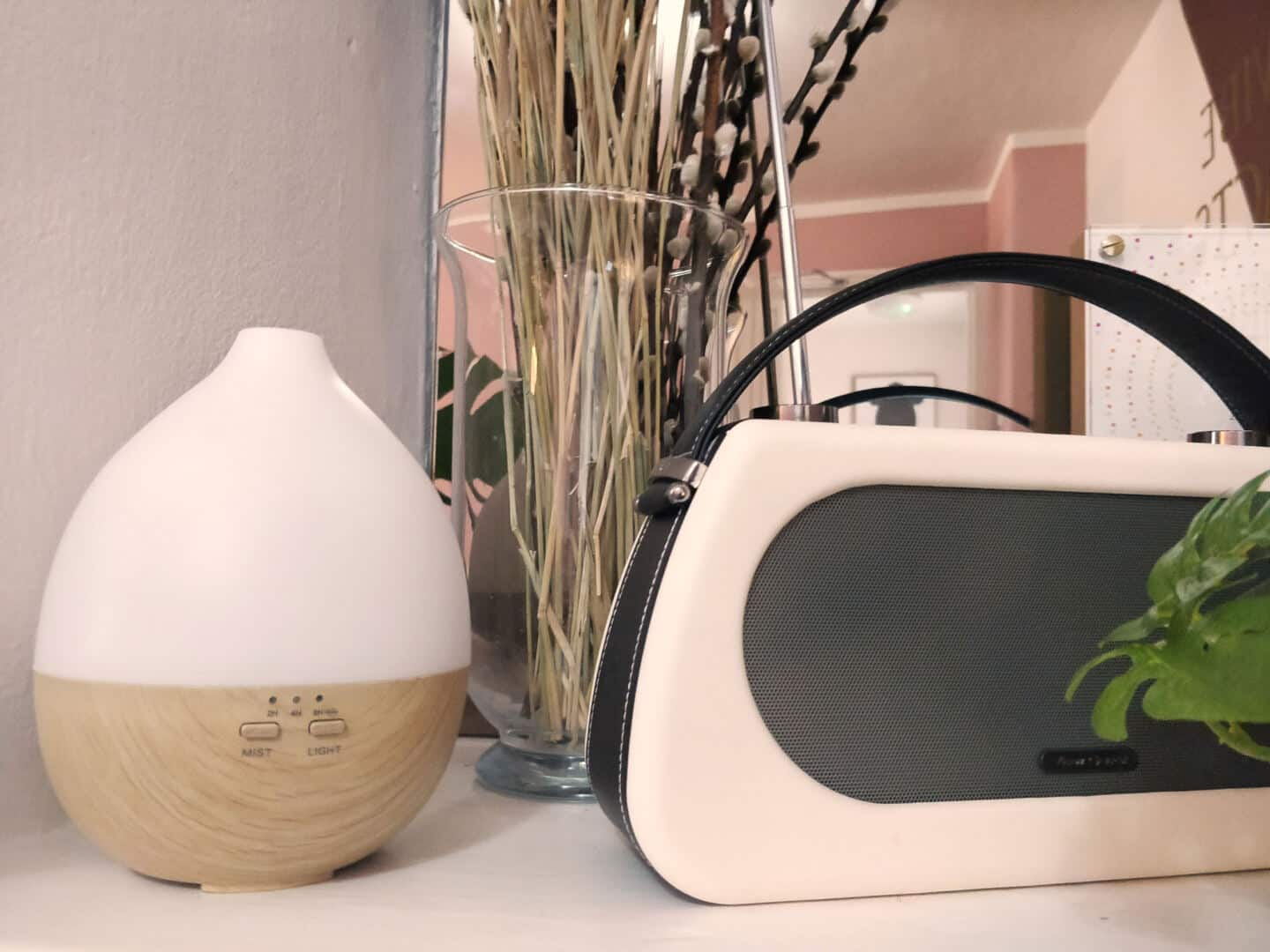 Smellacloud aroma diffuser on a shelf next to a radio and some pampas grass