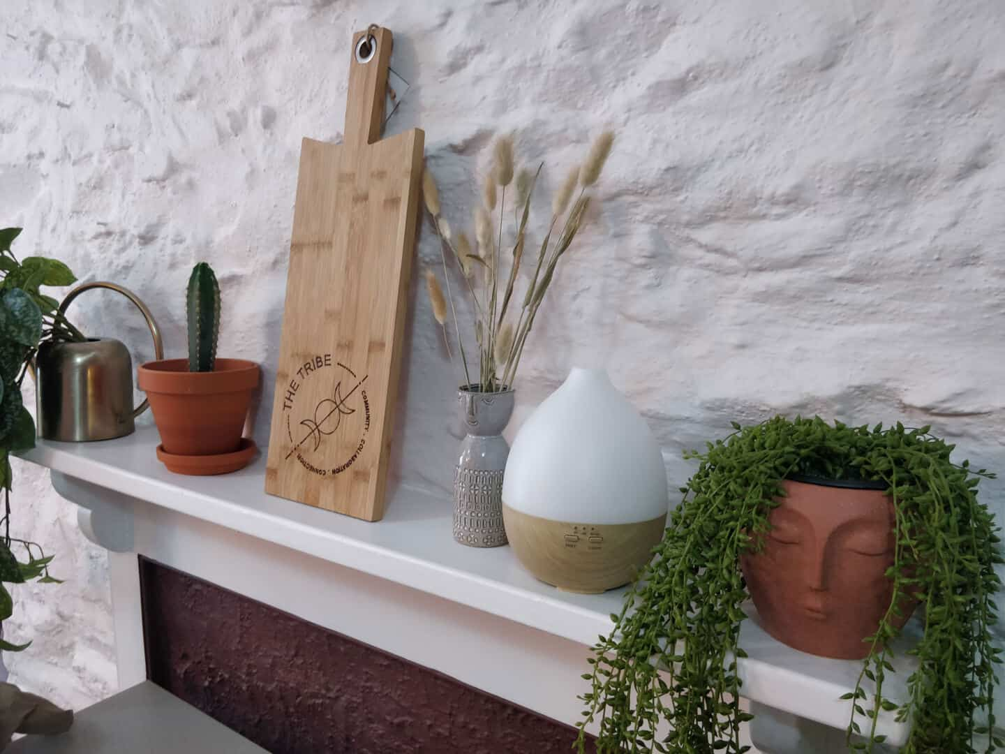 A mantle full of plants and vases