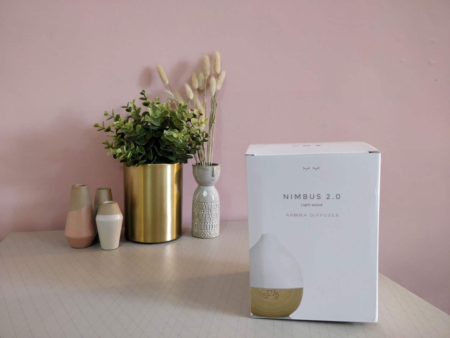 Smellacloud aroma diffuser in a box on a table with plants and vases