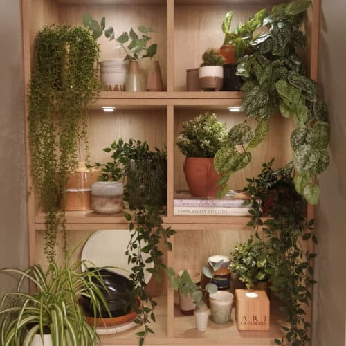 Square shelving in a magnet kitchen full of plants and decorative objects
