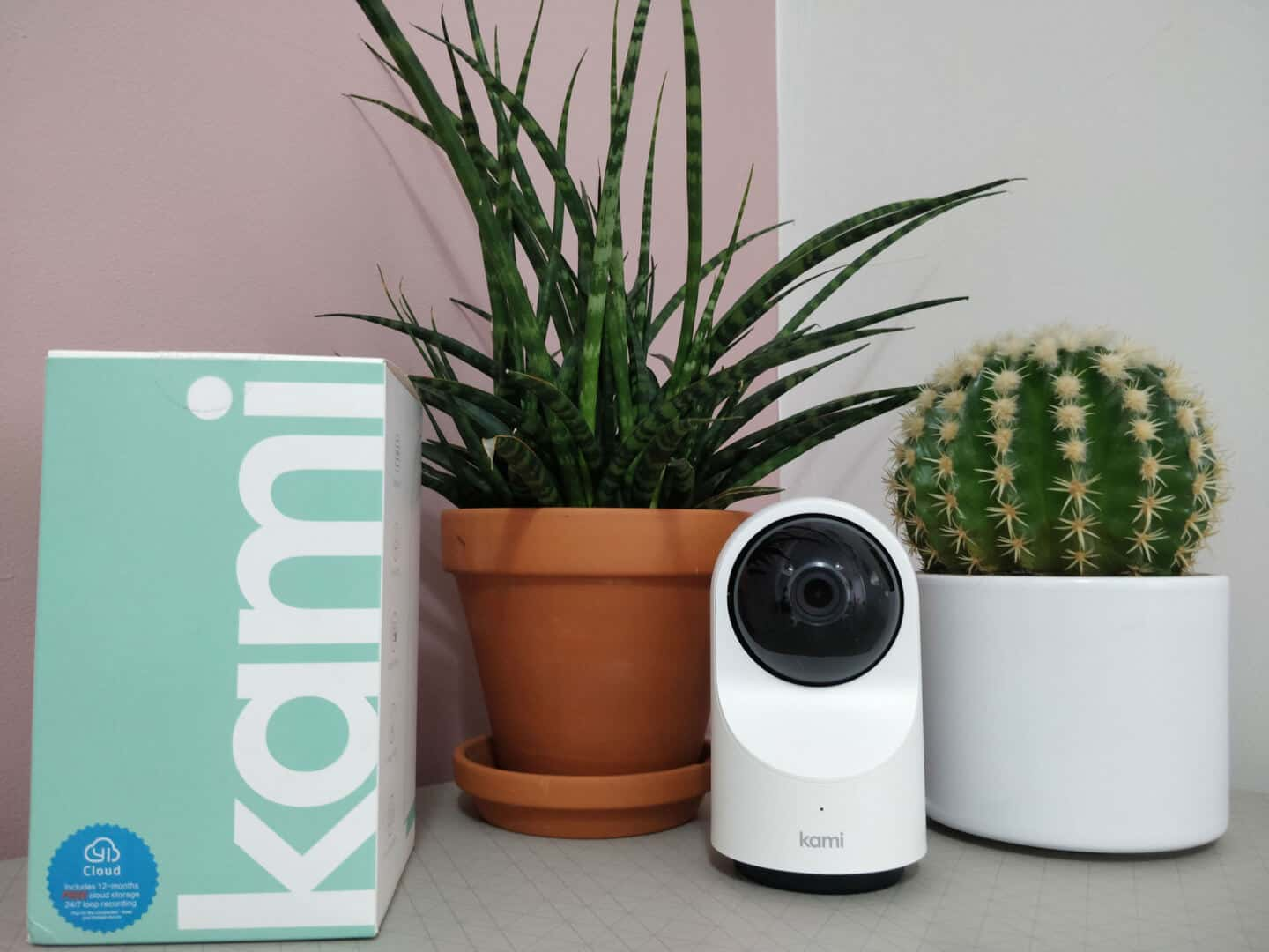 Kami indoor home security camera on a table between two plants with the empty box.